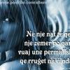 orig_nje_nat