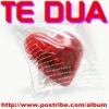 te_dua1 (70)