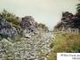 Kalaja Drishtit